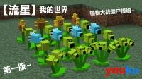 【流星】★我的世界★Minecraft 流星从天掠过★植物大战僵尸mod EP:1