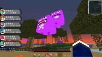 【小枫的Minecraft】人品爆发,闪光宠!我的世界-口袋妖怪大乱斗.ep20