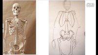 人体素描,骷髅素描,绘画教程