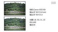 「科技发现」佳能Canon EF 50mm f/1.8 STM 镜头 评测 (对比EF 50mm f/1.4)