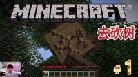 [小宝趣玩]Minecraft我的世界新手探索 - 01 去砍树/初夜生存