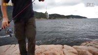 万山岛海钓矶钓:小铁板铅鱼抽几下就钓到雀鲷