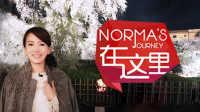 【日日煮】Norma在这里 - 全方位赏夜樱