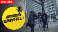[疯狂整蛊社团 第七集] 偷拍!毒蜘蛛粘在我手上