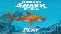 饥饿的鲨鱼世界 残暴沙鲨肆虐海域