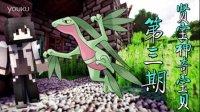 【贤宝神奇宝贝】木守宫进化了?森林蜥蜴!!