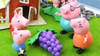 『奇趣箱』小猪佩奇分享大葡萄,托马斯小火车和变形警车珀利称赞葡萄很好吃!粉红猪小妹 佩佩猪