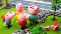 『奇趣箱』小猪佩奇送迷路的小鸟回家。粉红猪小妹 佩佩猪