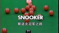 戴维斯台球教学中文完整版