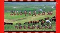 美丽的蒙古高原垻上草原拍摄(草原的景妍)