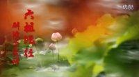 【《六祖坛经》解读与实修】坐禅品1