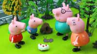 『奇趣箱』小猪佩奇之糊涂的蚂蚁和糊涂的爸爸。粉红猪小妹 佩佩猪