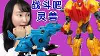 【新魔力玩具学校】雷暴猛虎 烈焰狮王 战斗吧 灵兽