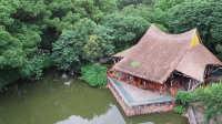 上海郊区老头老太喝茶嗑瓜子的茅草亭,竟是中国几十年来最伟大的建筑