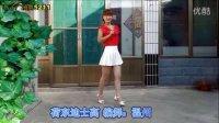 超简单16步 DJ 荷东迪士高 广场舞 燕子广场舞5211 附分解动作 编舞:温州燕子 简单易学 四个方向