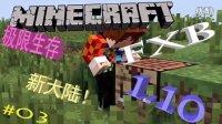 [FXB]Minecraft我的世界FXB的1.10服务器极限生存EP.03 新大陆 RE0乱入 定居