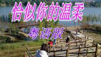 【恰似你的温柔】粤语版 推荐MV歌曲 网络流行歌曲