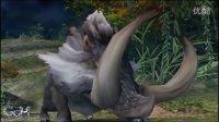 【怪物猎人P3】怀旧2-双野猪王
