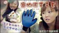 【鱼乾】不专业开箱 - 宠物洁毛手套,落毛整片撕!?
