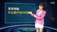 【股票市场概述】第12课,什么是沪深300指数【学股网】