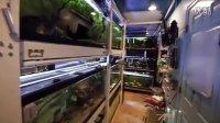 国外玩家 鱼室 工作室 小空间How to Build a Fish Room in a Small Space