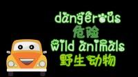幼儿英语启蒙★聪明的小汽车★系列② 野生动物 遛狮子 放生老虎 和大象的迁徙