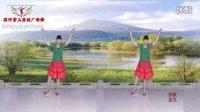滨河紫玉广场舞 新疆舞 最新广场舞 最美的还是我们新疆 附正反面教学动作分解演示 巴哈古丽演唱