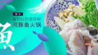 【日日煮】厨访-河豚鱼火锅