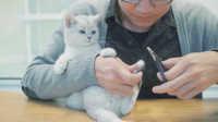喵呜记 第6集:如何正确给猫主子修剪指甲