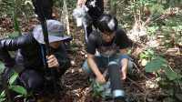 一个去亚马逊雨林寻找声音的人