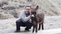 【集车】帝豪GS雪域单车新藏万里行(4)—小奶驴与米堆冰川