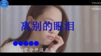 最新网络歌曲《离别的眼泪》 KTV伴唱版 音乐MV