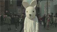 一只走上街头的兔子