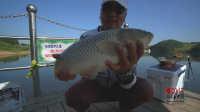 钓鱼视频《钩尖江湖》第四十九期 道中道 腰石水库尝试独特钓法