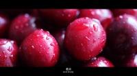 樱桃红了,世界上最好的樱桃上市了