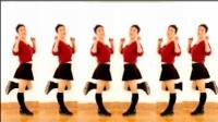2017最新广场舞  自由舞32步 馨蕊百合广场舞正面演示