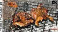 【露营野餐】如何剥洗并烤制山雀野味