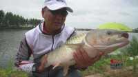 钓鱼视频《钩尖江湖》第五十八期 卧龙擒大鱼