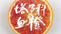 四川美食| 网红娟子带你走进资中血橙之乡,大吃特吃