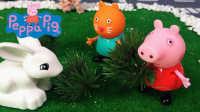 小猪佩奇、小猫坎迪喂兔子 粉红猪小妹 儿童玩具 动画 故事