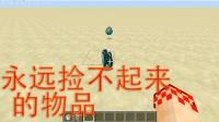 minecraft我的世界如何让物品永远捡不起来 【小桃子】命令方块教程番外篇