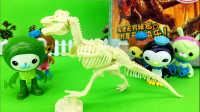 【玩趣屋海底小纵队玩具第一季】巴克队长和朋友们考古挖掘恐龙化石
