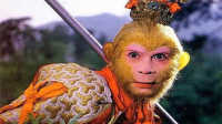 花果山最神秘的一只猴子
