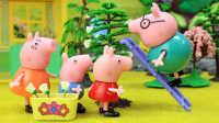 『奇趣箱』小猪佩奇玩具视频:小猪佩奇一家去摘槐花,猪爸爸从树上摔下来了。