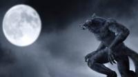第九十一集 十六世纪法国三万狼人被处死!