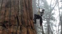 """""""我在厦门大学选修了爬树!"""""""