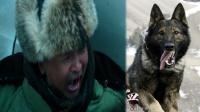 冒险力作《血狼犬》黄宏华丽转型,上演人与动物的真性情感.mp4
