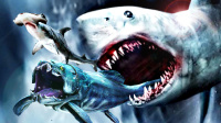 【屌德斯解说】 模拟食人鱼 海洋中的霸主巨型大白鲨不仅单挑邓氏鱼还能一口吞一只锤头鲨
