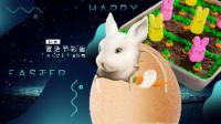 兔子胡萝卜蛋糕 140