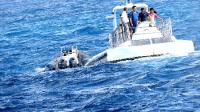 [拍客]漂洋过海去旅游美国夏威夷:乘潜水艇太平洋海底探险